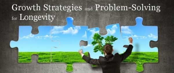 problem solving growth strategies